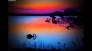 The Swan Of Tuonela - English Horn (Cor Anglais) James Horan