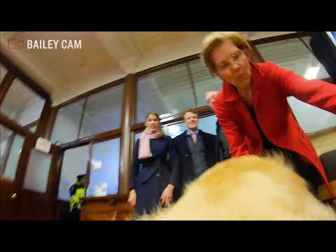 Video thumbnail for Backstage with Bailey at Elizabeth Warren's Presidential Campaign Announcement Speech