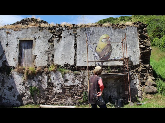 Nature is Home: Canary Ruin Mural