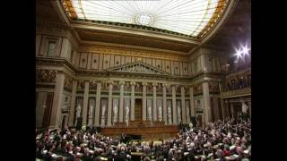 HD Daniel Wnukowski performs at the Austrian Parliament - Austrian Parliament Building (2017)
