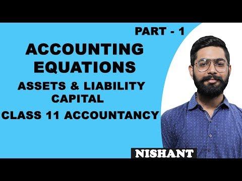 Accounting Equations | Class 11 Accounts | Assets & Liability Capital | iWiz Nishant