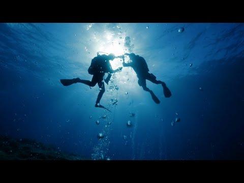 BIOACID - dem Ozeanwandel auf der Spur