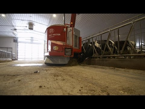 Video How Robots Are Saving the Dairy Farm