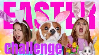 CUPCAKE CHALLENGE | WITH OUR DOG TOBY | Quinn Sisters