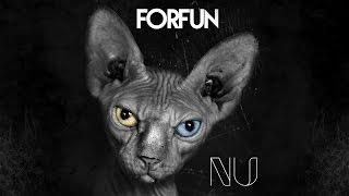Forfun - Coisa Pouca