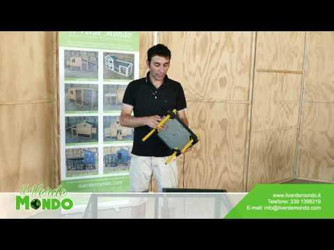 Allevamento pulcini: kit per lo svezzamento