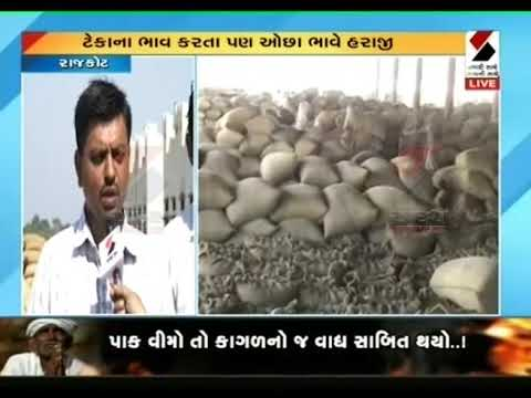 Rajkot: 70,000 Greater Peanut Revenue in Bedi Marketing Yard ॥ Sandesh News