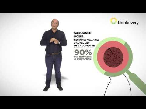 La prophylaxie des thromboses veineuses de la recommandation