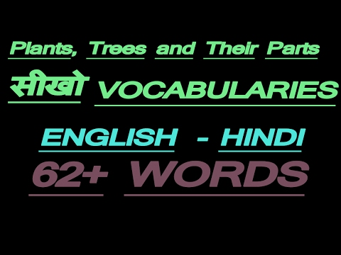 English Vocabulary -  60+ Names of Plants, Trees and Their Parts in English with meaning in Hindi