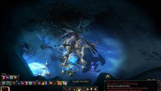 Pillars of Eternity [3 02] - Solo Paladin vs  Alpine Dragon