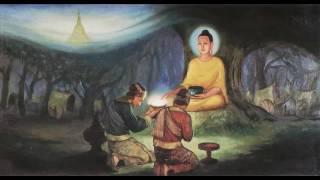 Kể Truyện Đêm Khuya_Sinh Lão Bệnh Tử_Những Lời Phật Dạy