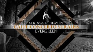 Classical Romantic Venice  :  Caffè Concerto Strauss | Venezia | Venedig | Venetian |