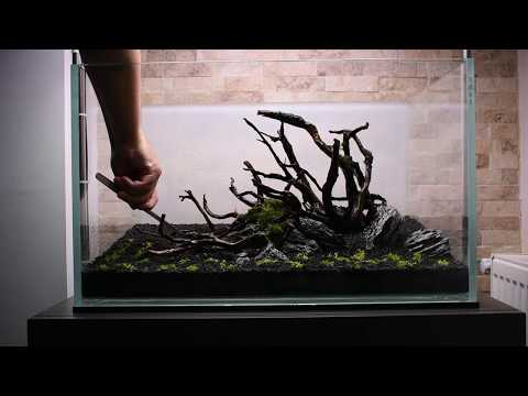 """Aquascaping step by step, """"The Serenity"""""""
