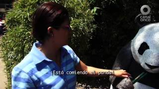 Viaje todo incluyente - Xochimilco, D. F.