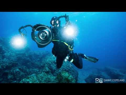 Gear Review – Big Blue 15000p Pro Tri-Color Underwater Video Lights