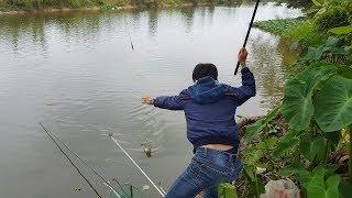 Câu cá sông – rình mấy ngày mới bắt được con cá này