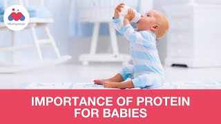 Importance of Protein In Baby's Growth And Development