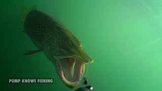 10 Minutes of Underwater Pike Strikes - Water Wolf Underwater Camera