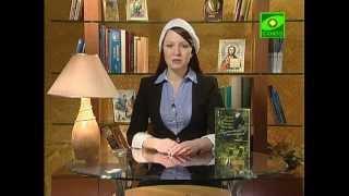 Старец  Паисий  Святогорец. Свидетельства  паломников от компании Стезя - видео