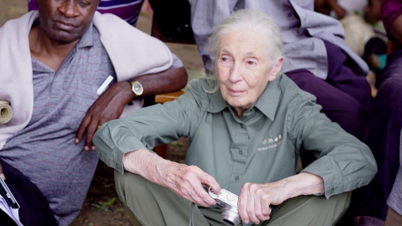 Trailer för Jane Goodall: The Hope