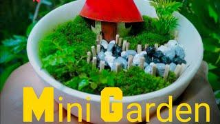 Miniature Gardens | How To Make Mini Gardens For Indoor Decoration  | Mini Gardens