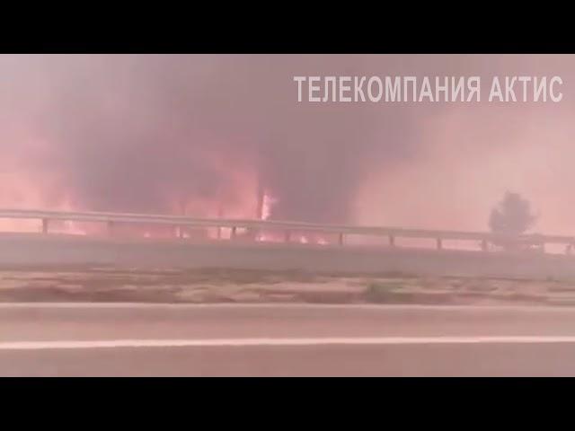 Лесные пожары в Ангарске