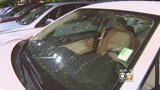 Hail Deals Massive Damage To Homeowners, Businesses