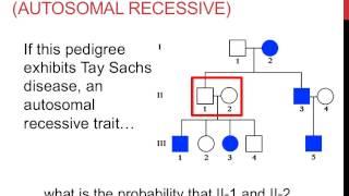 Solving Pedigree Genetics Problems