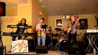 Glory Days - Bruce Springsteen Cover by Strange Company Band