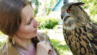 [With subtitles] Owl Q&A. A lecture for children