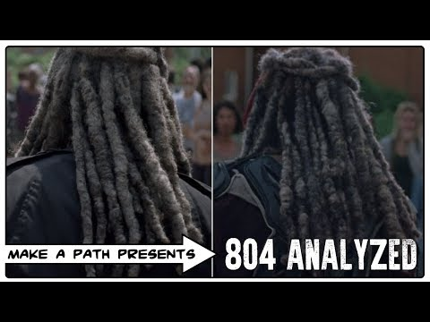 THE WALKING DEAD ANALYZED 804
