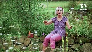 Zistrose - Hausapotheke bei Erkältungen   Mini Kräuterkunde mit Ruth Pfennighaus