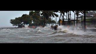 #160 Ураган Ирма!Нас Затопило!Змеи Взбесились!Флорида.Ждём
