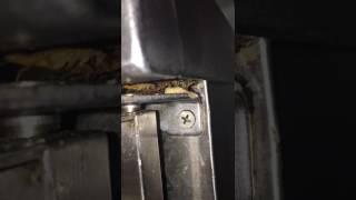 Pest Asia Video Testimonial 3