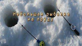 Ловля плотвы зимой в озерах