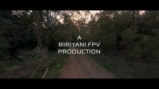 Cinematic FPV Pembroke Park 4k