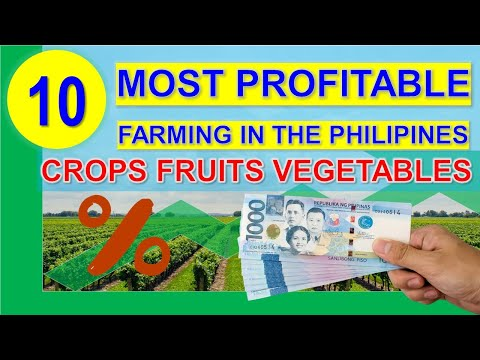 , title : 'The Top 10 Most Profitable Farming Business in the Philippines per Return on Investments % |Hectare