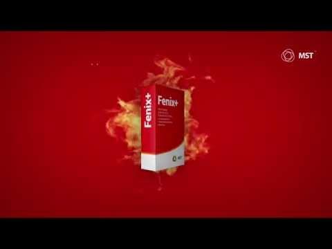 Fenix+ — программа для расчета пожарного риска