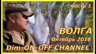 #1. Осенняя рыбалка в Астраханской области. Октябрь 2018. Протока Фурсова. Часть 1.