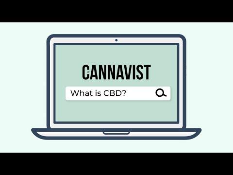 The CANNAVIST: CBD 101