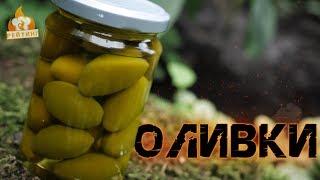 Рейтинг: Оливки