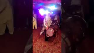 Papu dhool master 03014937843 for booking context us