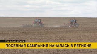 На Гомельщине стартовала посевная кампания, но не все сельхозпредприятия оказались к ней готовы