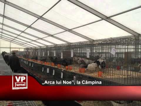 """""""Arca lui Noe"""", la Câmpina"""