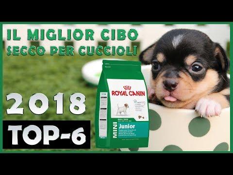 Il Miglior 🔥 Cibo Secco Per Cuccioli 🐶 TOP-6 🔥