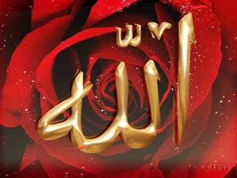 10 способов получить любовь Аллаха!