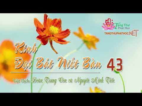08. Phẩm Hạnh Thanh Tịnh Phần 3 -1