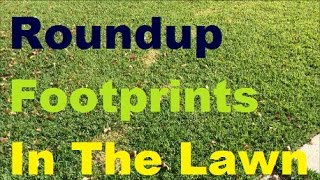 Roundup Footprints In The Lawn - BE VERY VERY CAREFUL