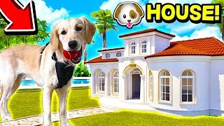 BUYING MY PUPPY A *GIANT* DOG HOUSE! 🐶