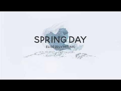 acoustic english cover  bts   spring day            elise  silv3rt3ar